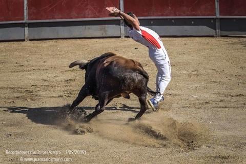 Recortadores con Toros, Azagra (11/09/2019)